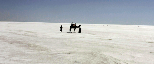 Experience infiniteness in the Rann of Kutch