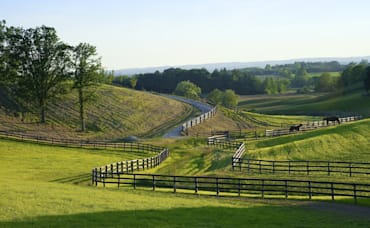 How to Buy a Horse Property with the USDA