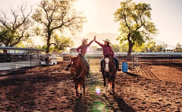 Eco-conscious Practices in Horse Barns