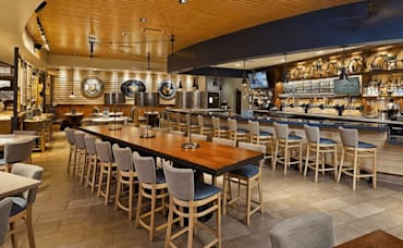 Eat Creative, Authentic Southern Revival at Tupelo Honey Café