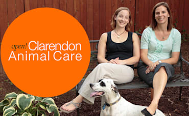 New Vet Clinic For Pet-Loving Clarendon Community