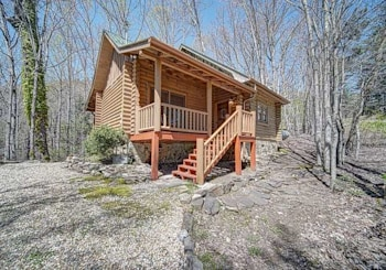 251 LAUREL MOUNTAIN ROAD CHERRY LOG, GA 30522
