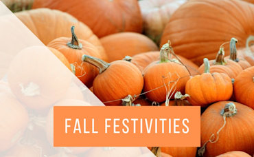 Vienna's Best Fall Festivities!