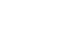 The Prince Group Logo