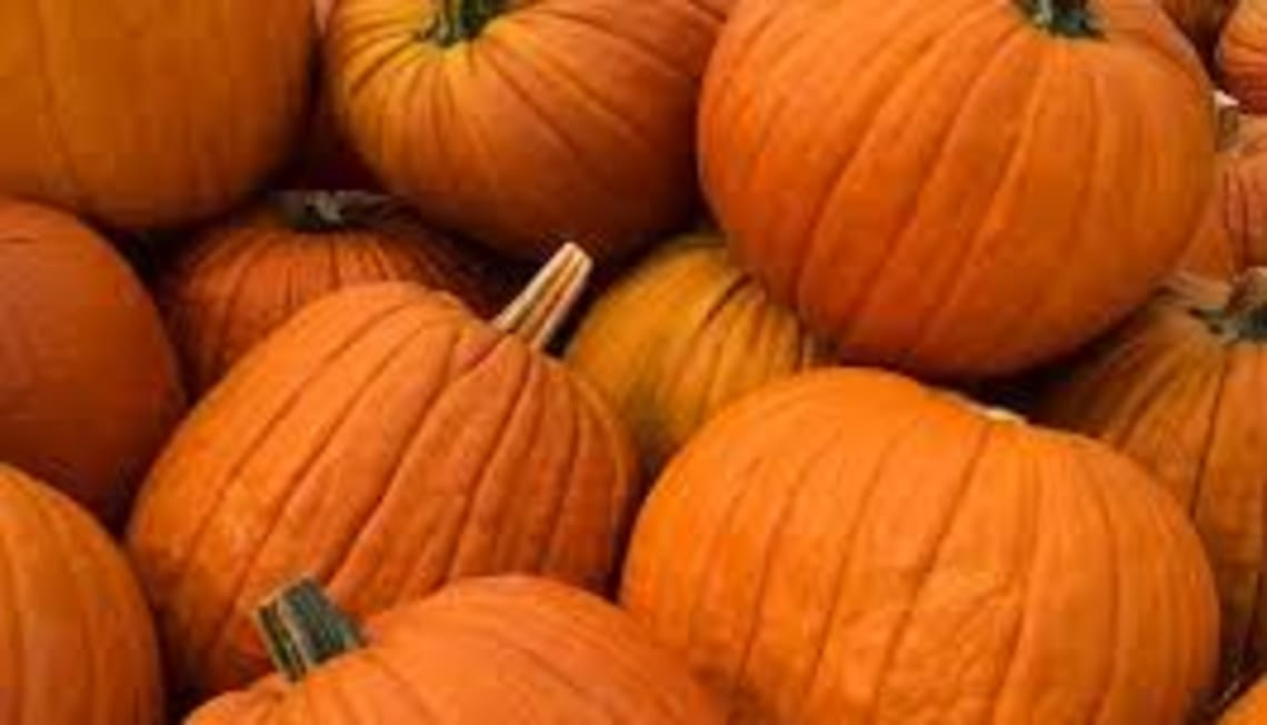 Local Happenings In October