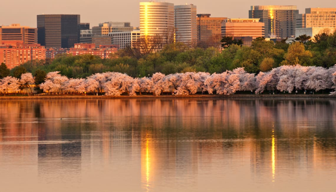 """Arlington, VA made Top 10 List of """"Happiest Cities To Work In"""" by Forbes"""