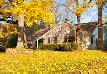 Fall Leaves and Your Home