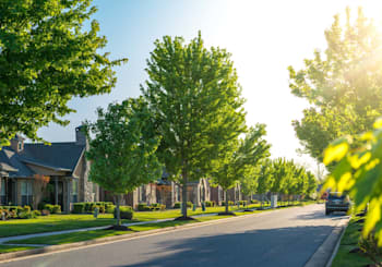 Don't Believe These Myths About the Suburbs