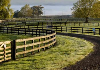How to Reduce Equestrian Property Buying Stress