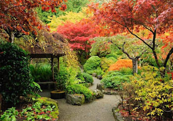 Fall Garden Tips for a Better Spring