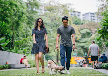 Best Dog Parks In Jersey City