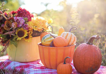 Things to do this fall in Maryland