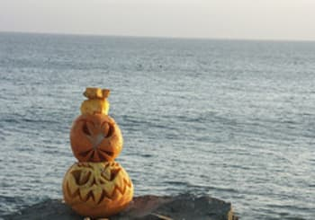 Create the Best Jack-O-Lantern for Your Home