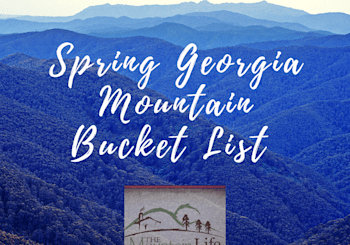 2019 Spring Bucket List for The Georgia Mountains!