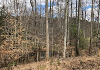 JUST LISTED! LOT 17 BIG CREEK BLUE RIDGE, GA!