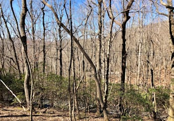 JUST LISTED…LOTS 3713 AND 3714 IN BENT TREE COMMUNITY IN JASPER, GA!