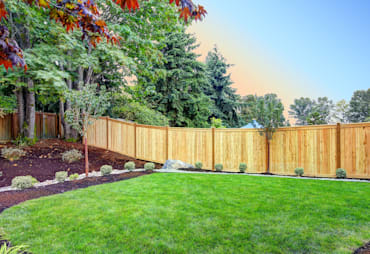 Budget Backyard Privacy Ideas
