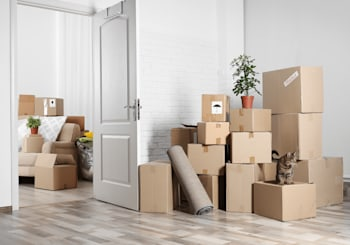 Moving While Social Distancing: Can It Be Done?