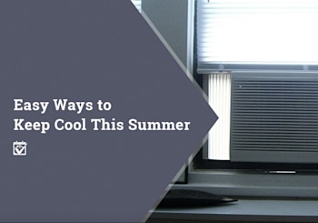 Easy Ways to Keep Cool This Summer (and Keep Some Green in your Pocket)