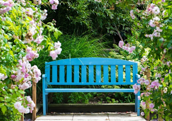 Spring Curb Appeal Boosters