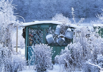 Get Your Garden Ready for Winter