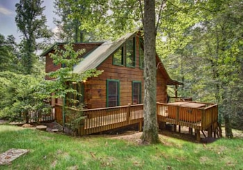 SOLD! 352 MILLSTONE MOUNTAIN LANE BLUE RIDGE, GA!