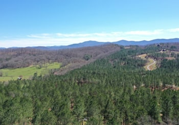 JUST LISTED LOTS 176 AND 177 THE STABLES AT THIRTEEN HUNDRED BLAIRSVILLE, GA!