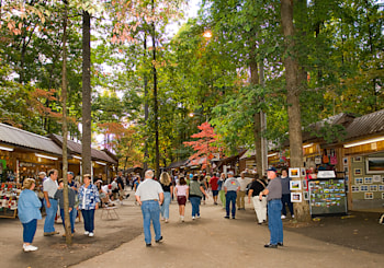 Georgia Mountain Fall Festival in Hiawassee, GA!