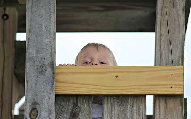 Little boy peek a boo