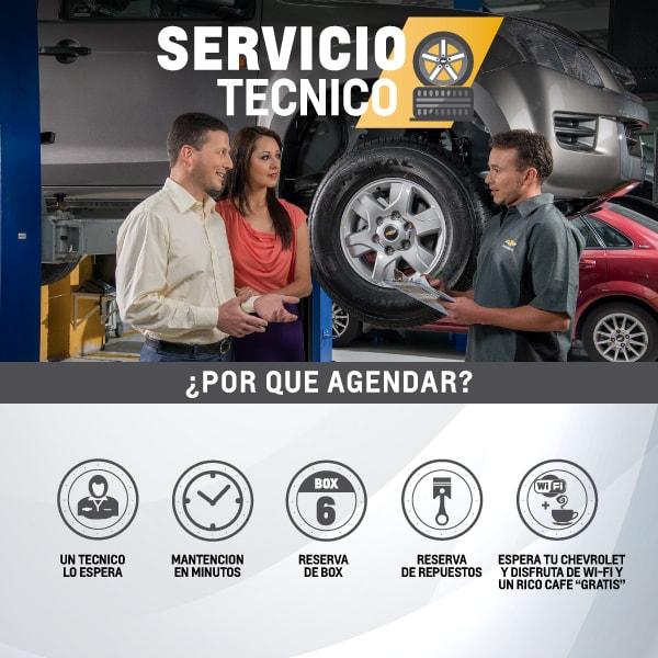 Servicio Ténico