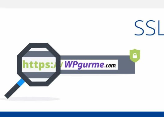 wordpress-ssl-https-kurulumu