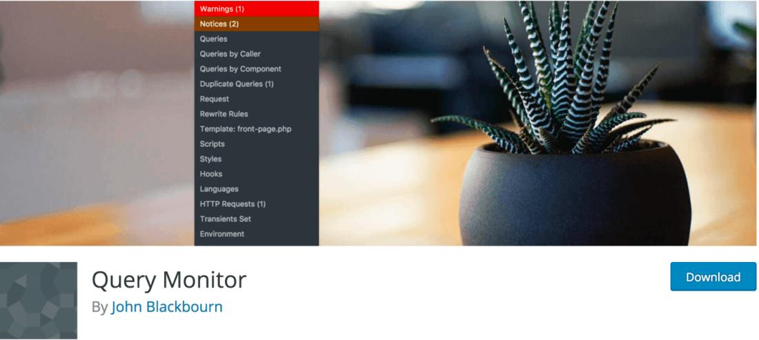 plugin-query-monitor