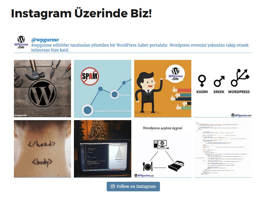 wordpress instagram örnek sayfa