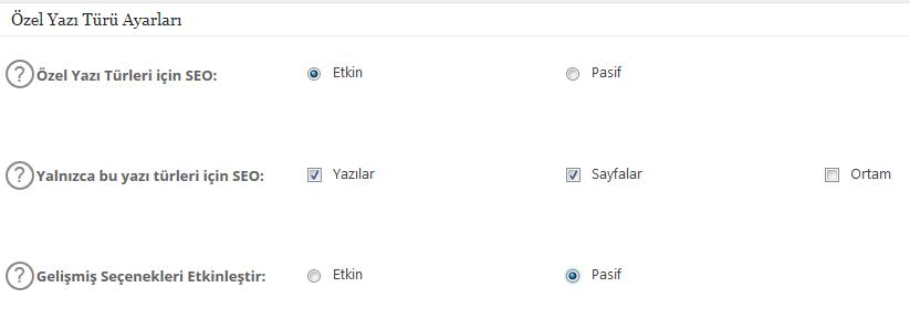 all in one seo özel yazı türü ayarları nasıl yapılır
