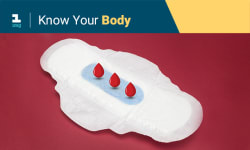 Know Your Body: What Is A Normal Period?