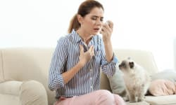 4 Ways To Prevent Asthma Attacks At Home