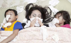 10 Frequently Asked Questions About Seasonal Flu Answered!