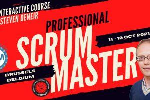 Professional Scrum Master