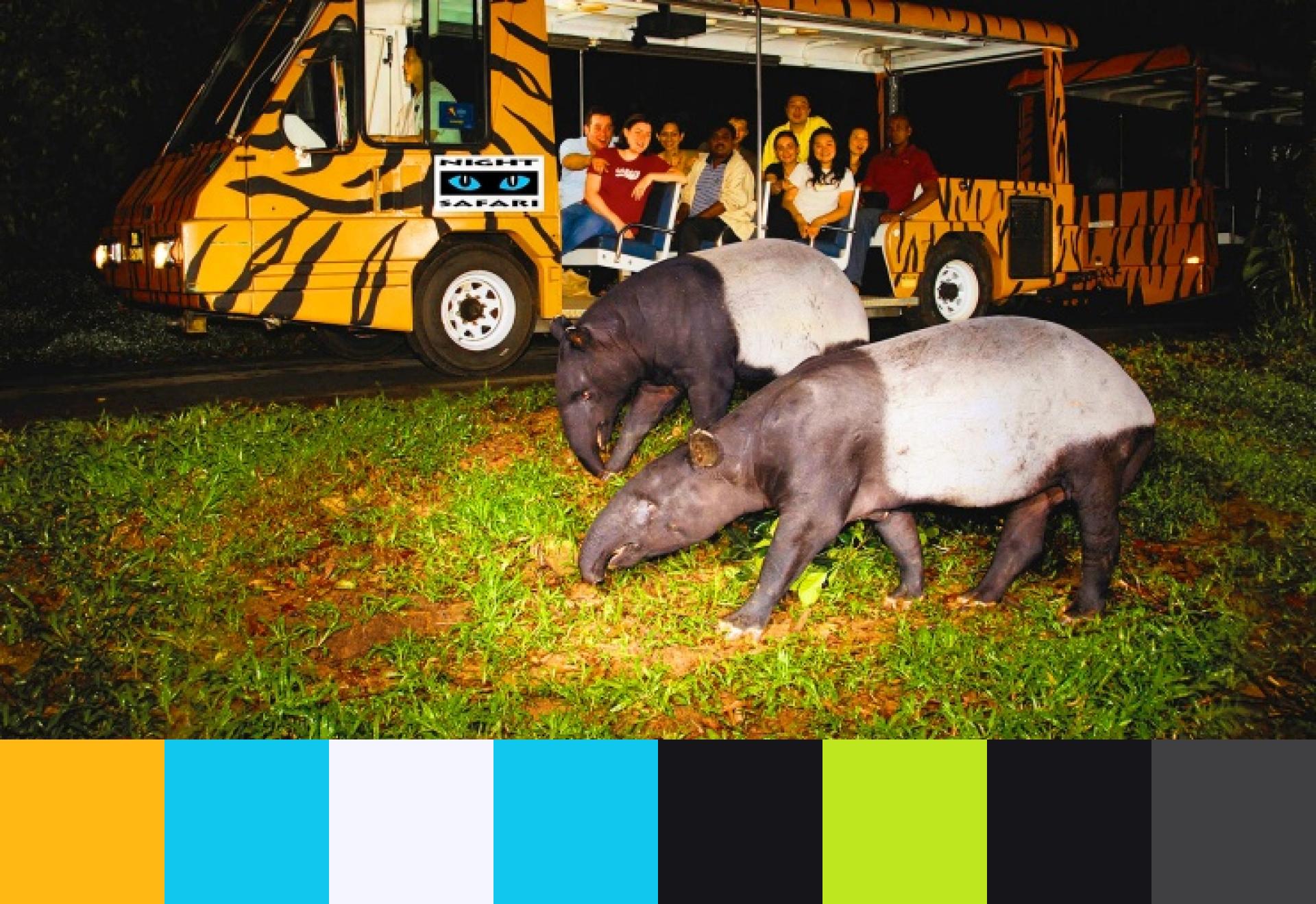 night safari color swatch