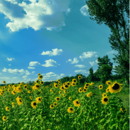 5 Beautytipps für den Sommer
