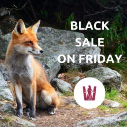 Black Sale on Friday für große Größen 2017