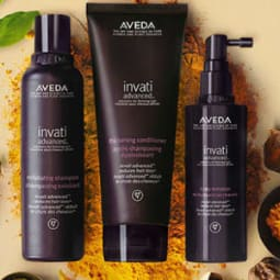 Aveda. The Art and Science of pure Flower and Plant Essences