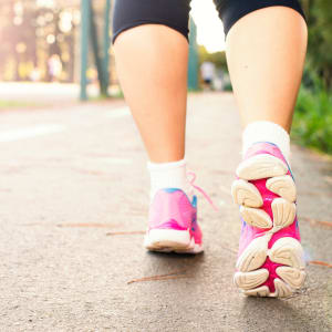 Sport für Übergewichtige Wundercurves: Nordic Walking