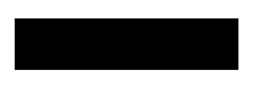 elvi Logo