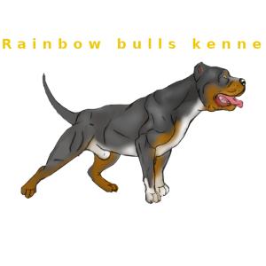 Rainbow Bulls