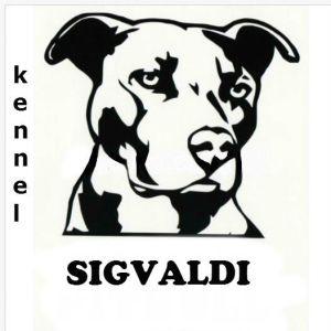 Sigvaldi