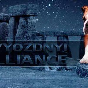 Zvyozdnyi Alliance