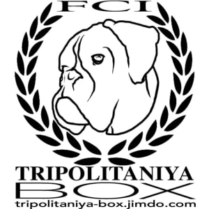 Trypolytanyia Boks