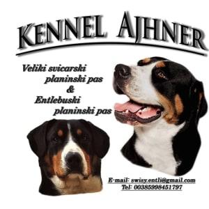 Ajhner