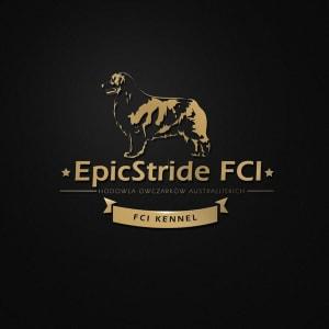Epicstride
